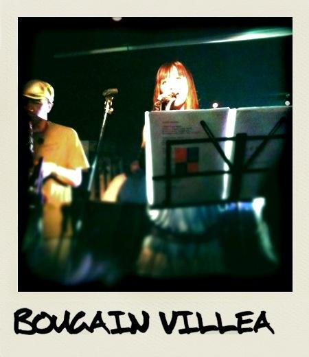 Bougain Ville-A